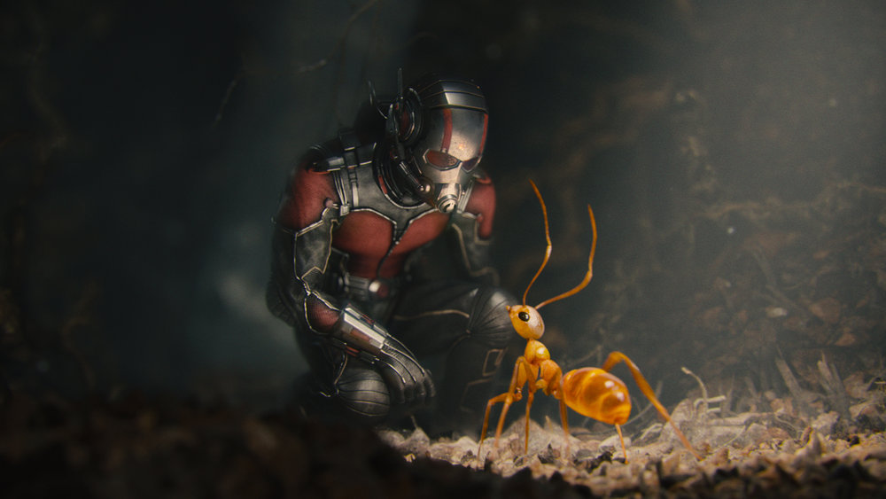 ant man marvel cinematic universe