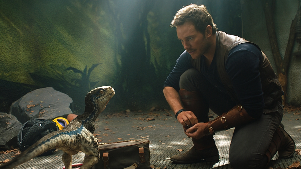 the surprising love affair with blue the raptor talk film society