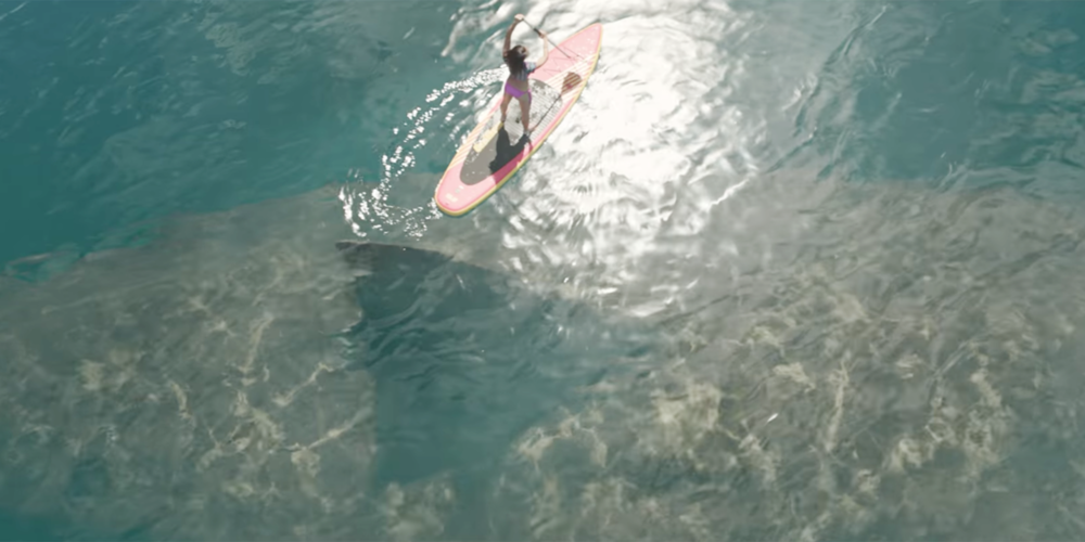The Meg Aerial