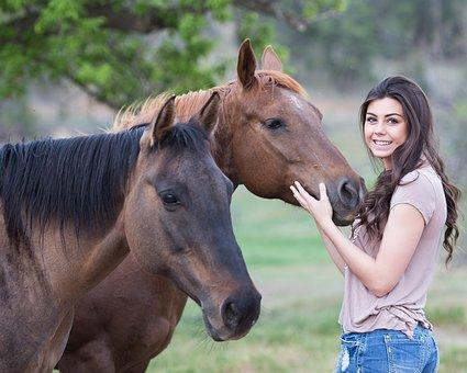 horse pix for blog.jpg