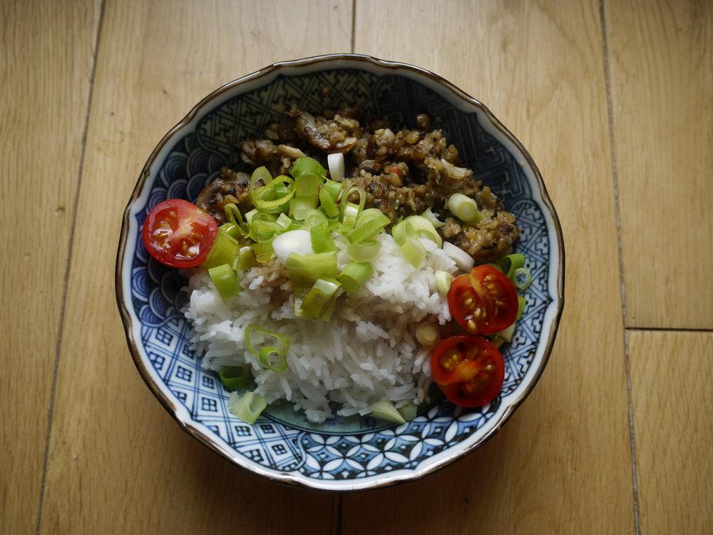 Spicey Vegetarian Haggis & Rice
