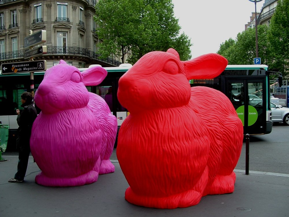 p09.paris bunnies.JPG