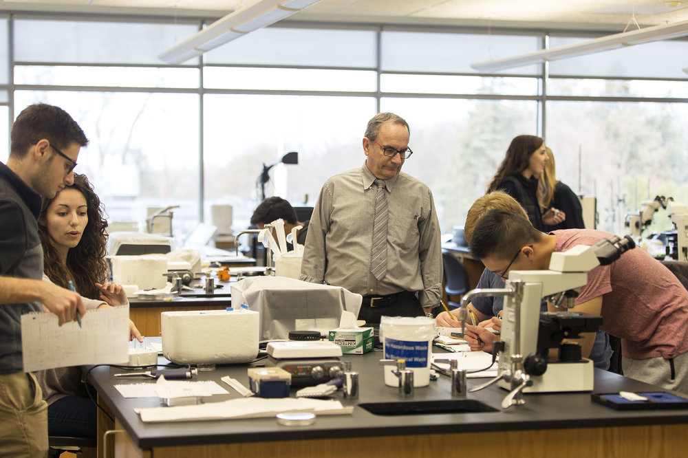 Students in SUNY Distinguished Teaching professor of biology Robert O'Donnell's immunology lab work on their assignments (pictured above). Current biology students will not be affected by modifications to the major that were put in place. Instead, only incoming students will be impacted by this adjustment to the existing system. (Annalee Bainnson/Photo Editor)