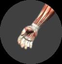 Wrist & Hand Image.png