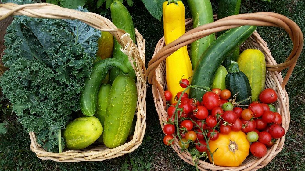 Veggies cham 1.jpg