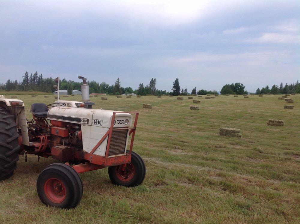 tractorcham.jpg