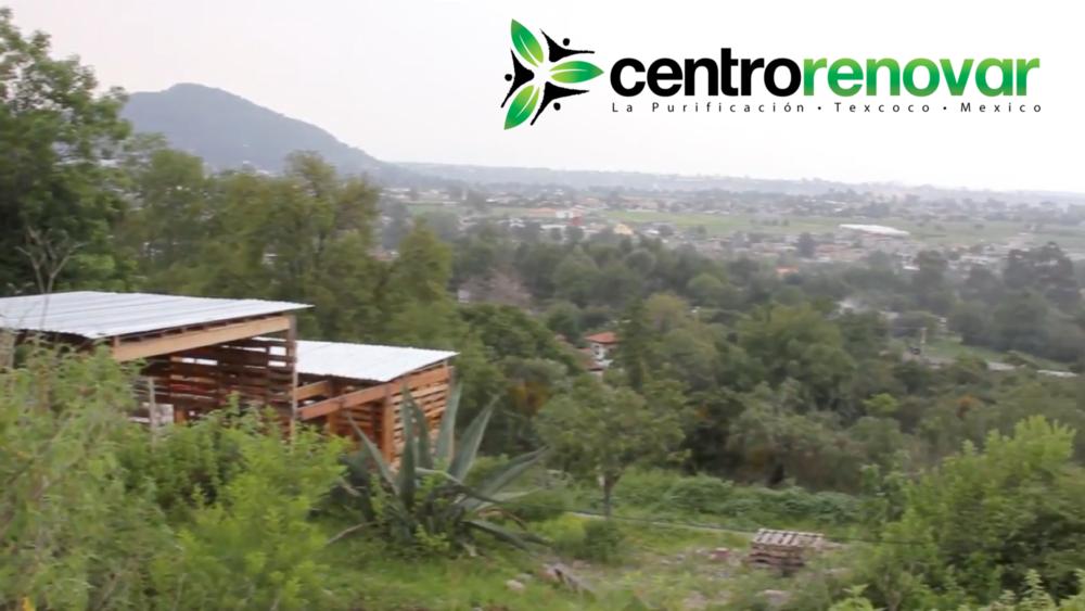 Centro Renovar