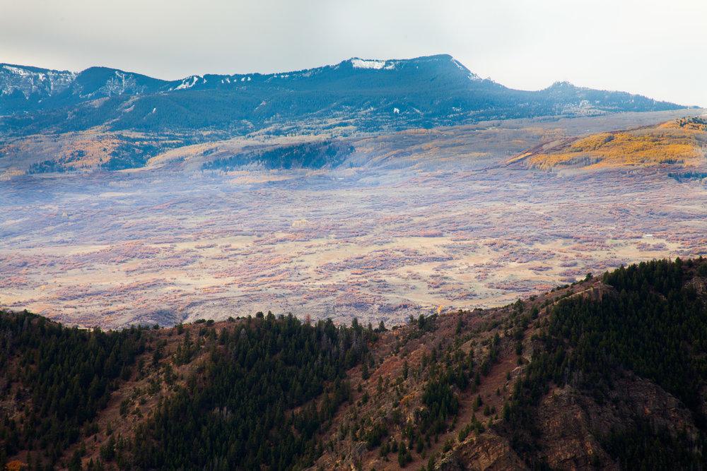 Ridge and plains scrub