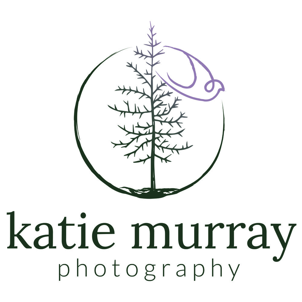 KatieMurray-MainLogoWName-Color.jpg