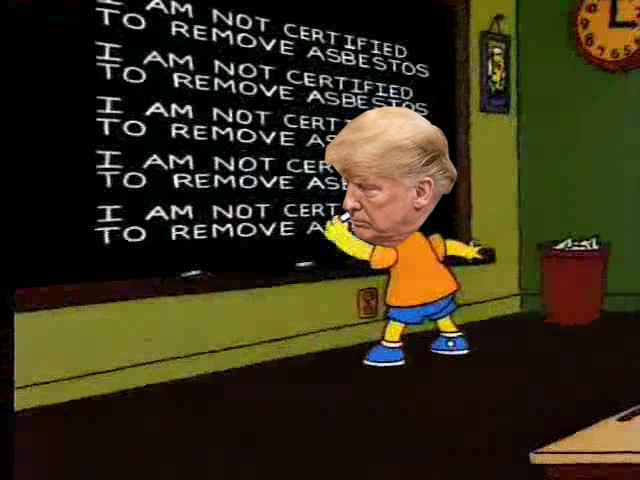 Trump Asbestos Meme SNUR.jpg