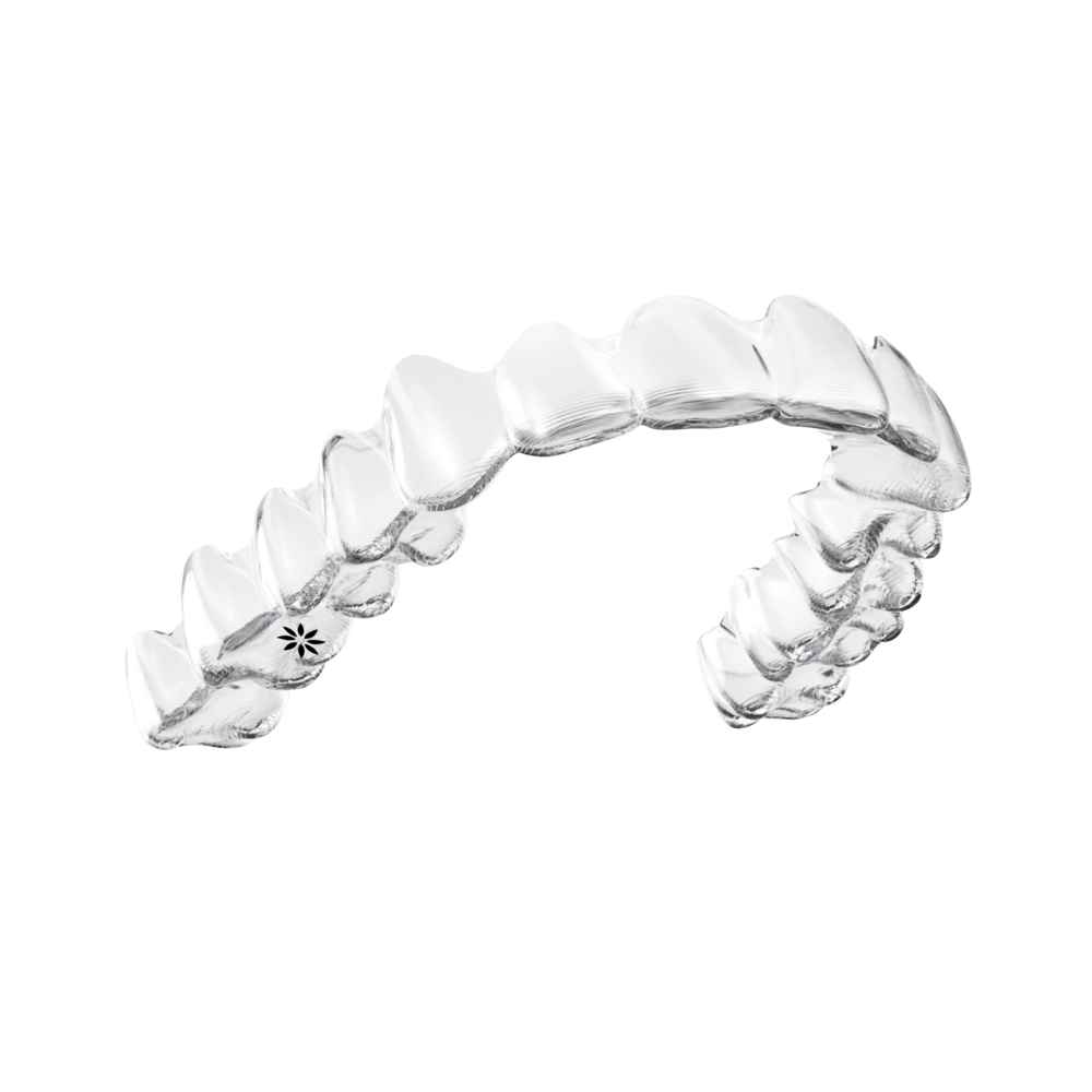 Aligner_on_White_Background_10_18_2017_11_30_50_AM.png