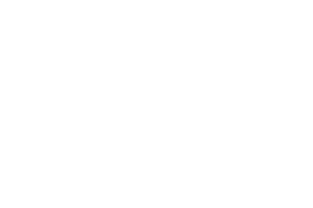 OFFICIAL SELECTION - Knoxville Film Festival - 2017 (white v2).png