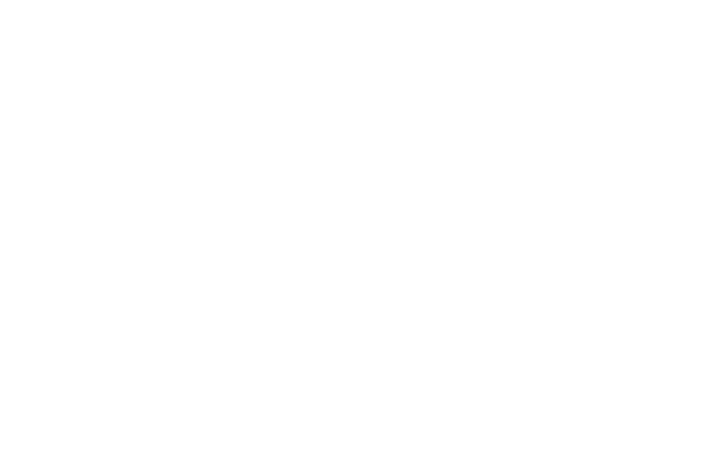 OFFICIAL SELECTION - Marina del Rey Film Festival - 2017 (white).png