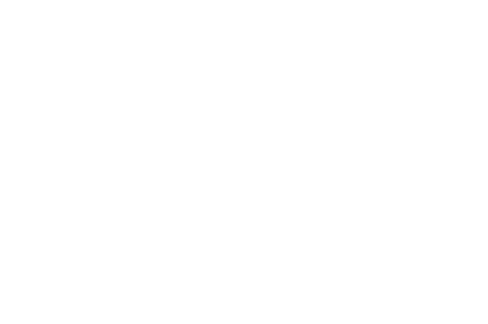 OFFICIAL SELECTION - East Lansing Film Festival 2 - 2017.png