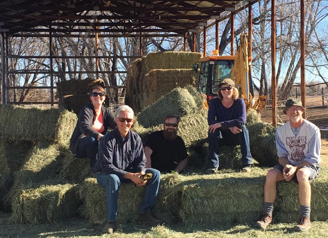 Moving hay.jpg