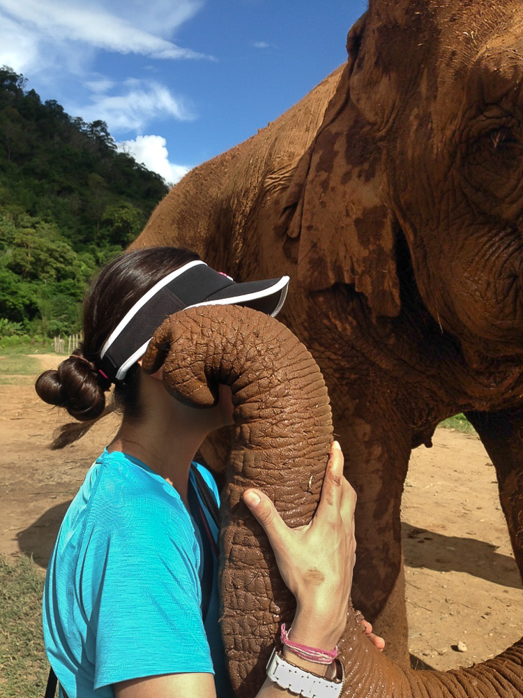 This sweet elephant took me by surprise! I was talking to the other volunteers at the  Elephant Nature Park  in Chiangmai, Thailand when she came close and touched my face in a very funny, loving way. #friendsforlife