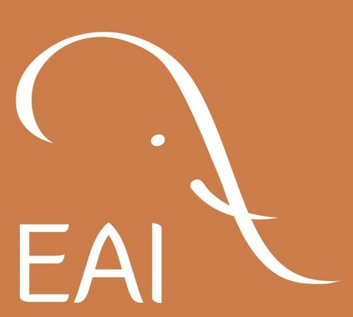 Elephant Aid International