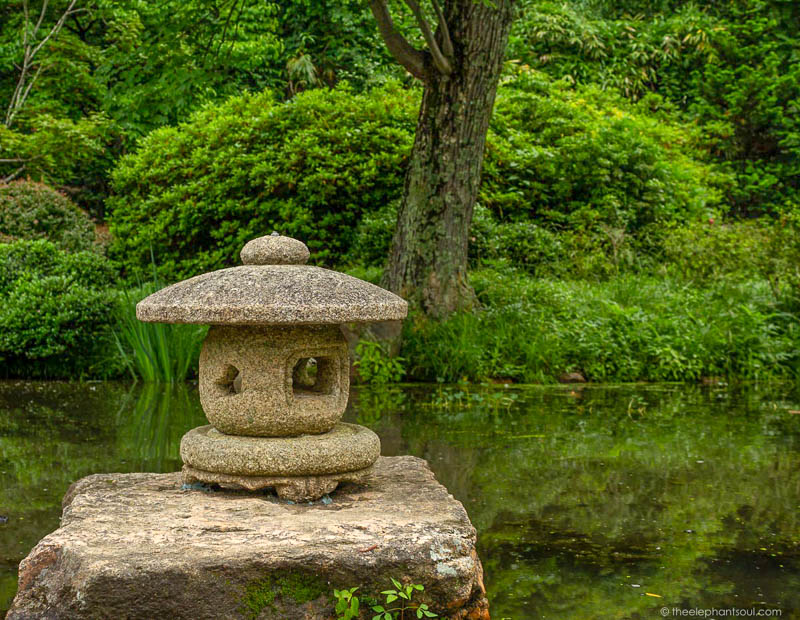 This photo was taken during one of my visits to Maymont Japanese Gardens in Richmond, Virginia. Taking a walk in open green areas helps us connect more to the things that keep us healthy and positive.