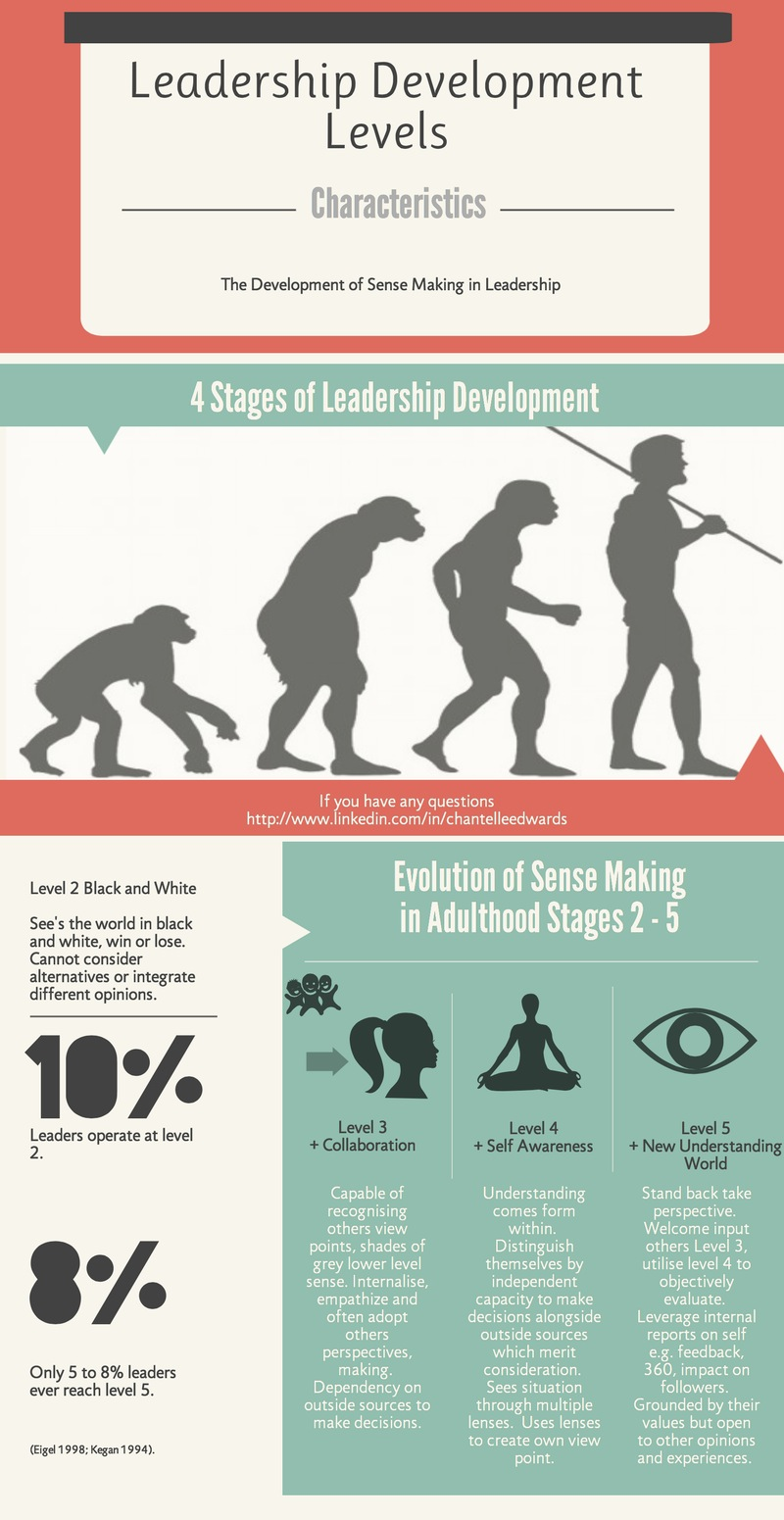 Leadership Development via Sense Making