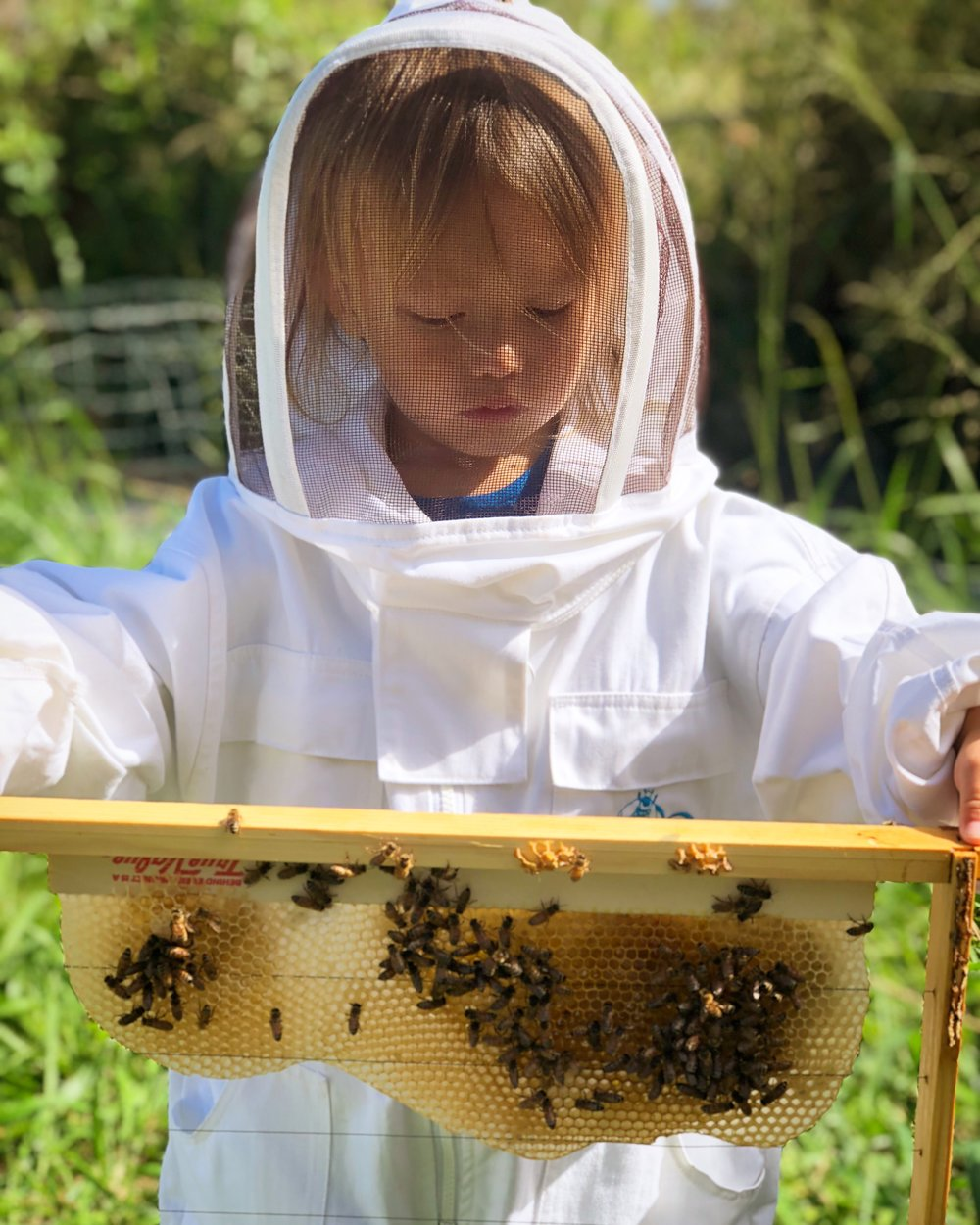 youngest beekeeper at 2 years old