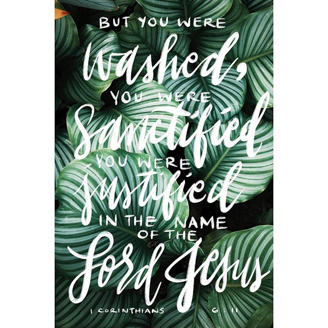 Well this is my first try using an iPad for lettering, so it's nothing exciting but it was fun playing around. 🌿 This text came from one of my devotions recently, and it was just so beautiful to me. It comes right after a list of sinners who won't be in heaven. People often like to pick out descriptions of sins and point fingers. But the truth is that no matter what it is, if we have something separating us from God, it's just as likely to keep us from heaven. But the amazing promise comes right afterward. How we were redeemed. Justified. Sanctified. Washed. SAVED. No matter what sin is pulling us down, we have the ability to overcome through Christ. Be blessed this upcoming week! 💚🌿 #devotional #devotions #lettering #biblelettering #bibleverse #bible #corinthians #ipadlettering #ipadproart #sanctified #blessed #justified #jesus #god #blessings