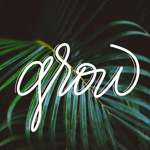 🌿 #ipadlettering #handlettering #draweveryday #evenifitsucks #lettering #ipadpro #grow #art