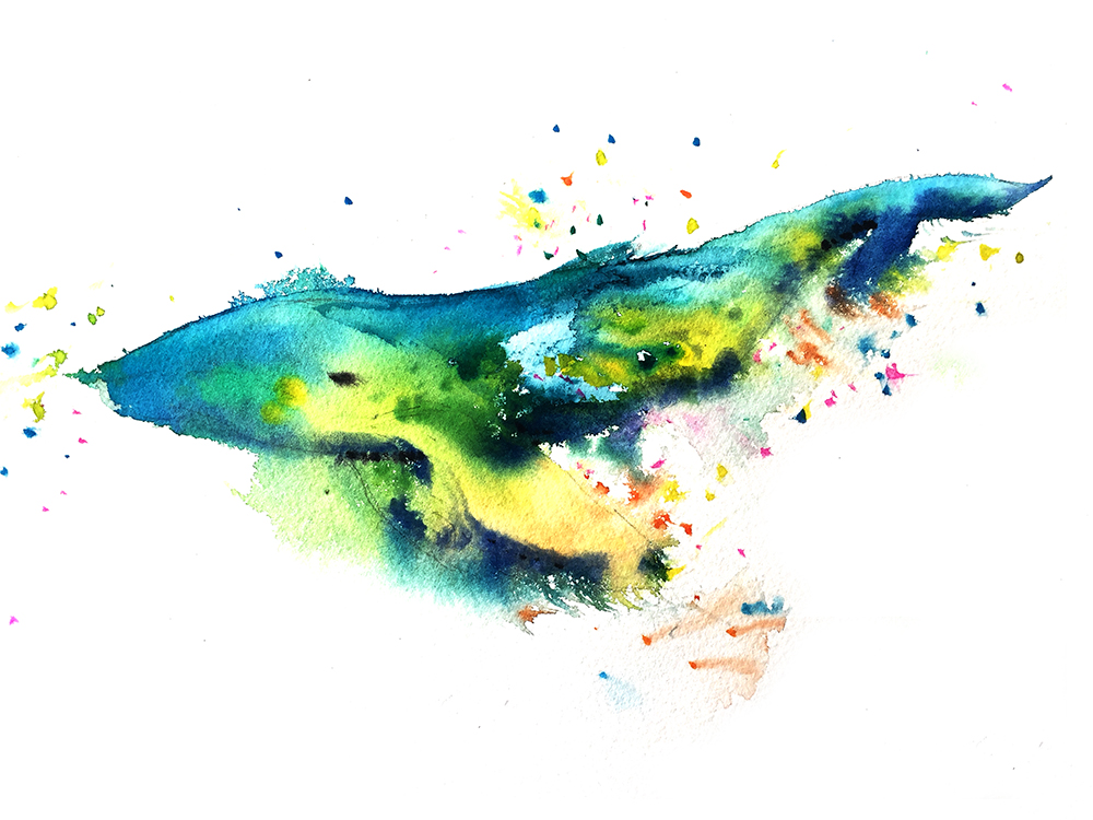 Watercolors by Christie Chisholm