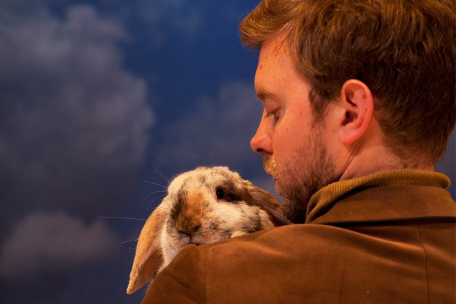 Velveteen Rabbit, Unicorn Theatre from 17th March, ideal for ages 5+