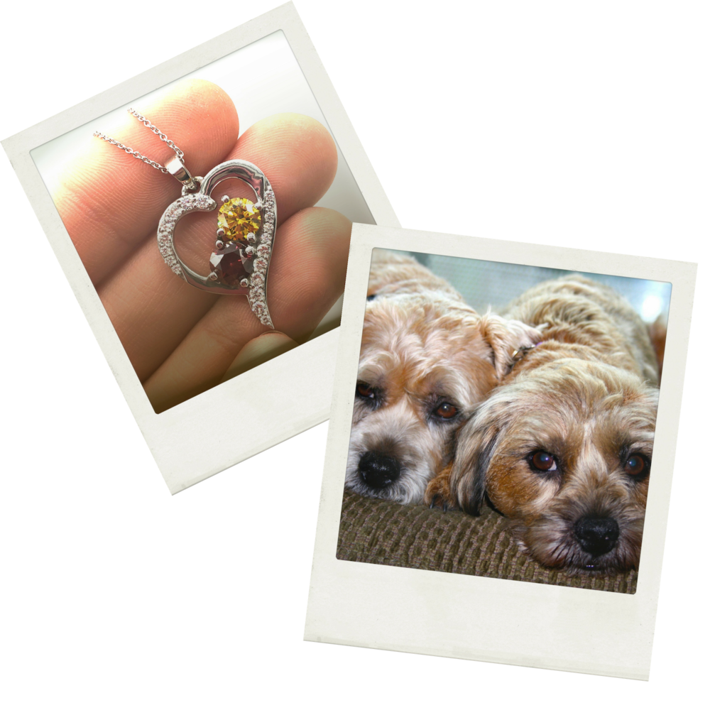 """""""It's more than a diamond - it's an experience, and we're so grateful for it."""" - Sandeep, Pet Parent to Twinkle & Mimi"""