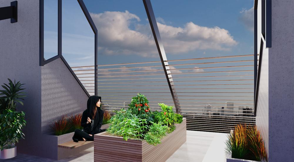 Anova_RaviBessabava_Rooftop.png