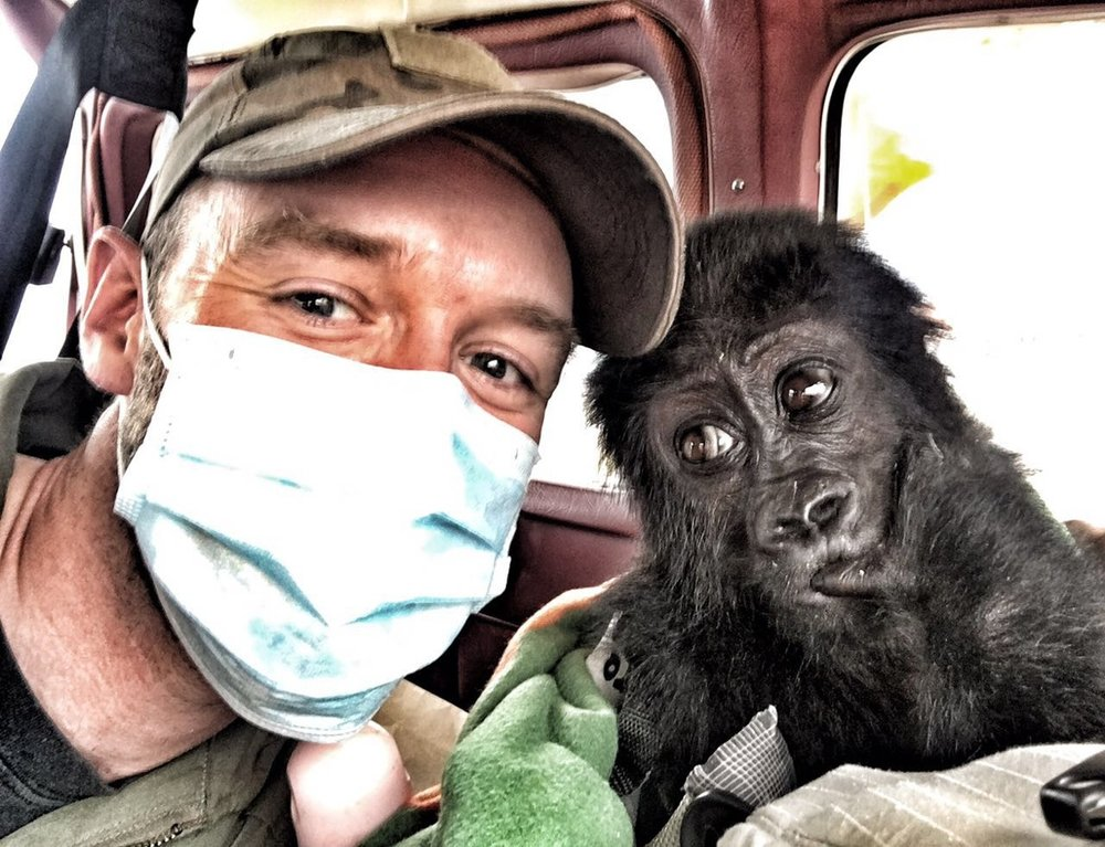 Heroes on the front line. A gorilla orphan and flight staff on it's way to a rehabilitation centre.