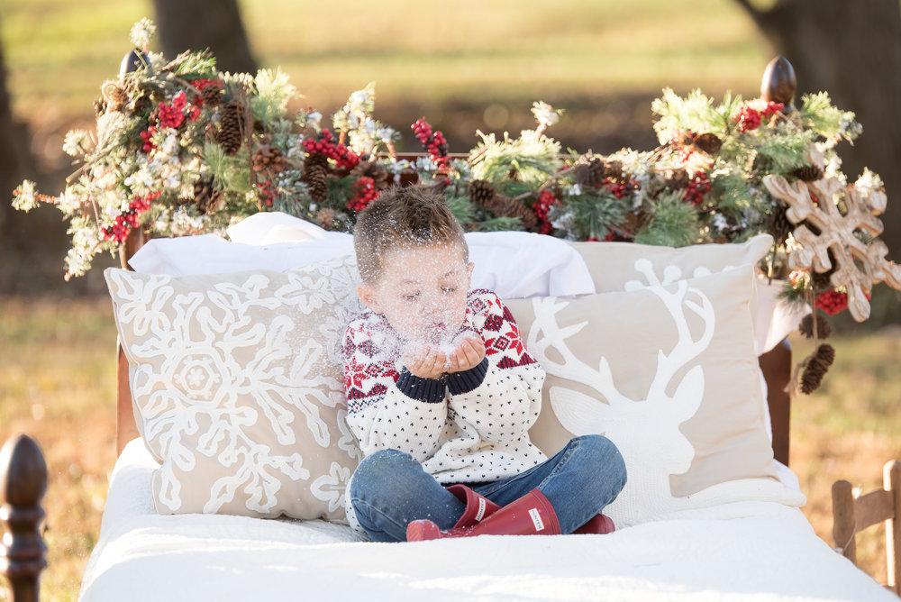 Nelson Christmas 2017 - Yasmin Leonard Photography-53.jpg