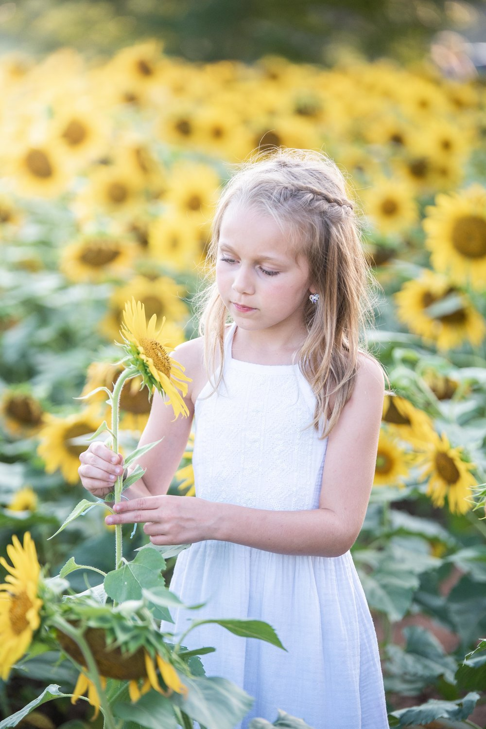 Dogwood Farm - Sunflower Field Photography Session - Sunflower Family Portraits - Fall Family Portraits - Summer Family Portraits - NC Photographer - NC Wedding Photographer - High Point Wedding Photographer -1.jpg