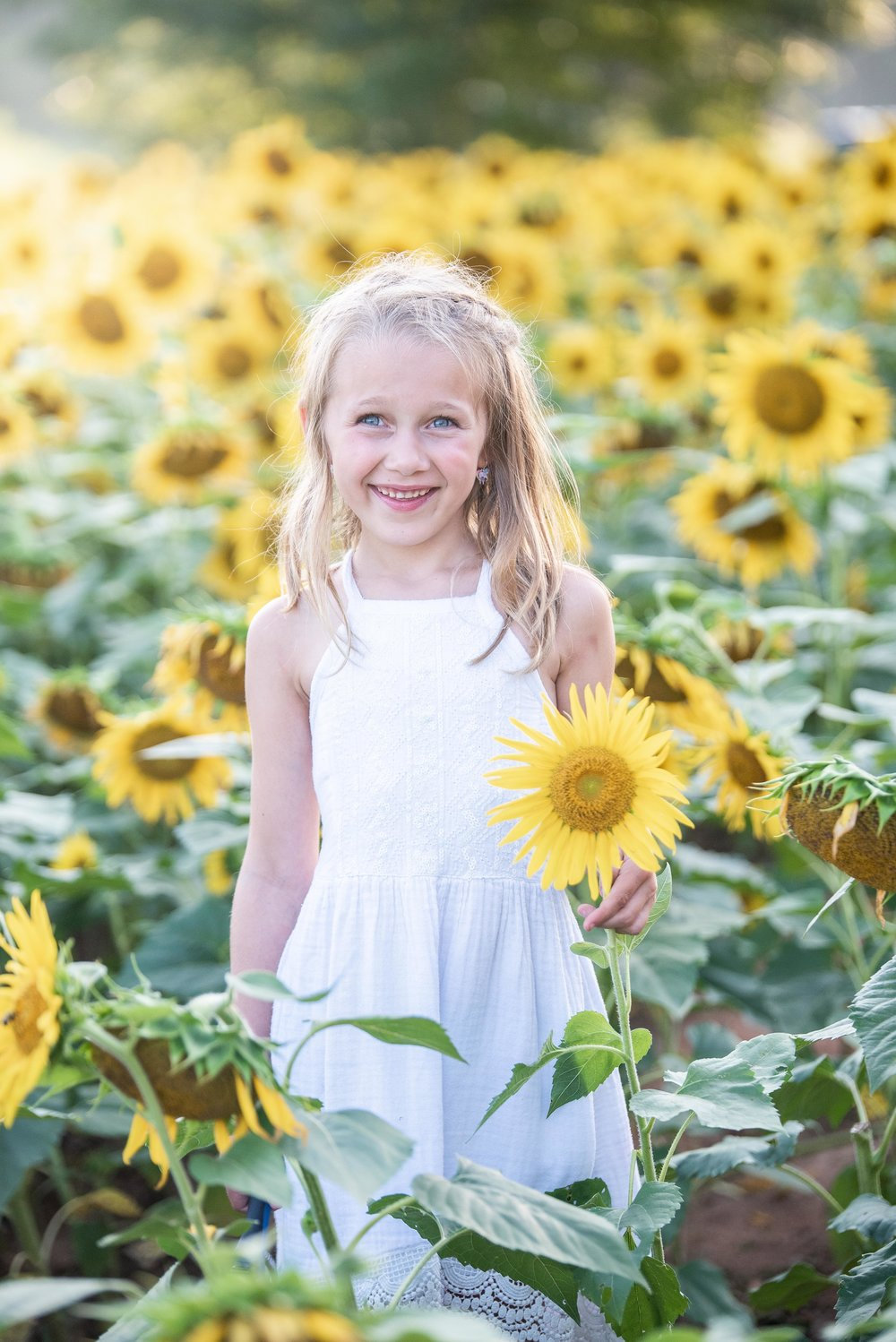 Dogwood Farm - Sunflower Field Photography Session - Sunflower Family Portraits - Fall Family Portraits - Summer Family Portraits - NC Photographer - NC Wedding Photographer - High Point Wedding Photographer -2.jpg
