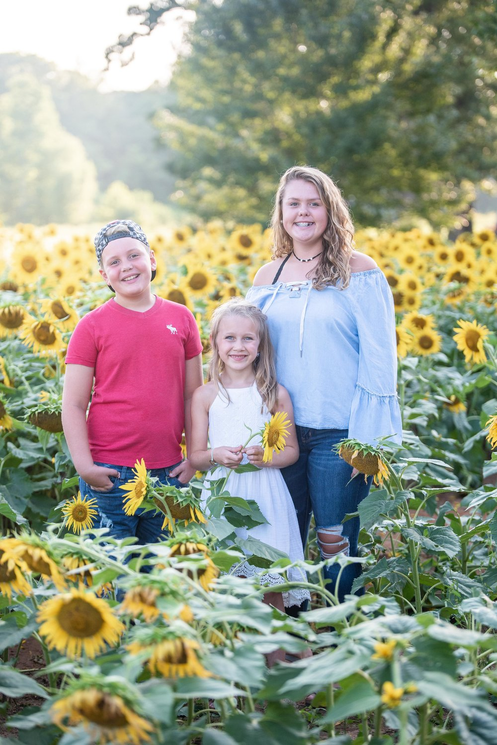 Dogwood Farm - Sunflower Field Photography Session - Sunflower Family Portraits - Fall Family Portraits - Summer Family Portraits - NC Photographer - NC Wedding Photographer - High Point Wedding Photographer -3.jpg