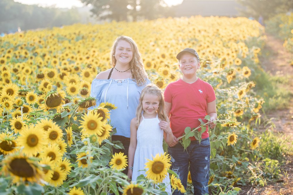 Dogwood Farm - Sunflower Field Photography Session - Sunflower Family Portraits - Fall Family Portraits - Summer Family Portraits - NC Photographer - NC Wedding Photographer - High Point Wedding Photographer -10.jpg