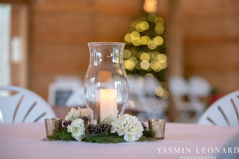 Secret Meadows at Green Dell Farm, NC Barns, NC Wedding Venues, Triad, NC, NC Wedding Photography, Triad Wedding Venues, Affordable Wedding Venues, NEW Wedding Venues, Christmas Weddings-4.jpg
