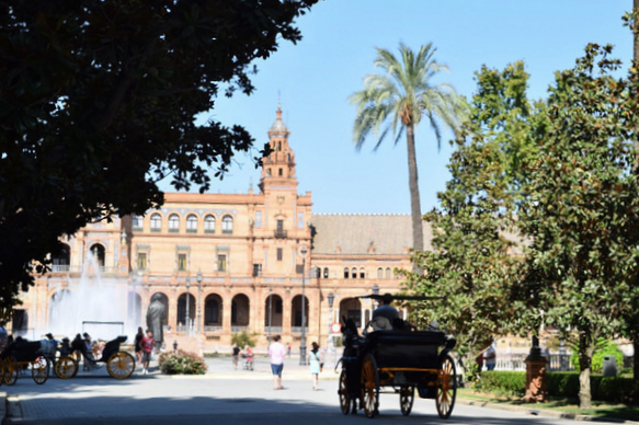 You will see the old downtown area from your horse-drawn carriage ride in Seville