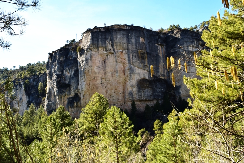Walking through the canyon with limestone cliffs towering on either side at Hoz de Beteta, Cuenca, Spain.