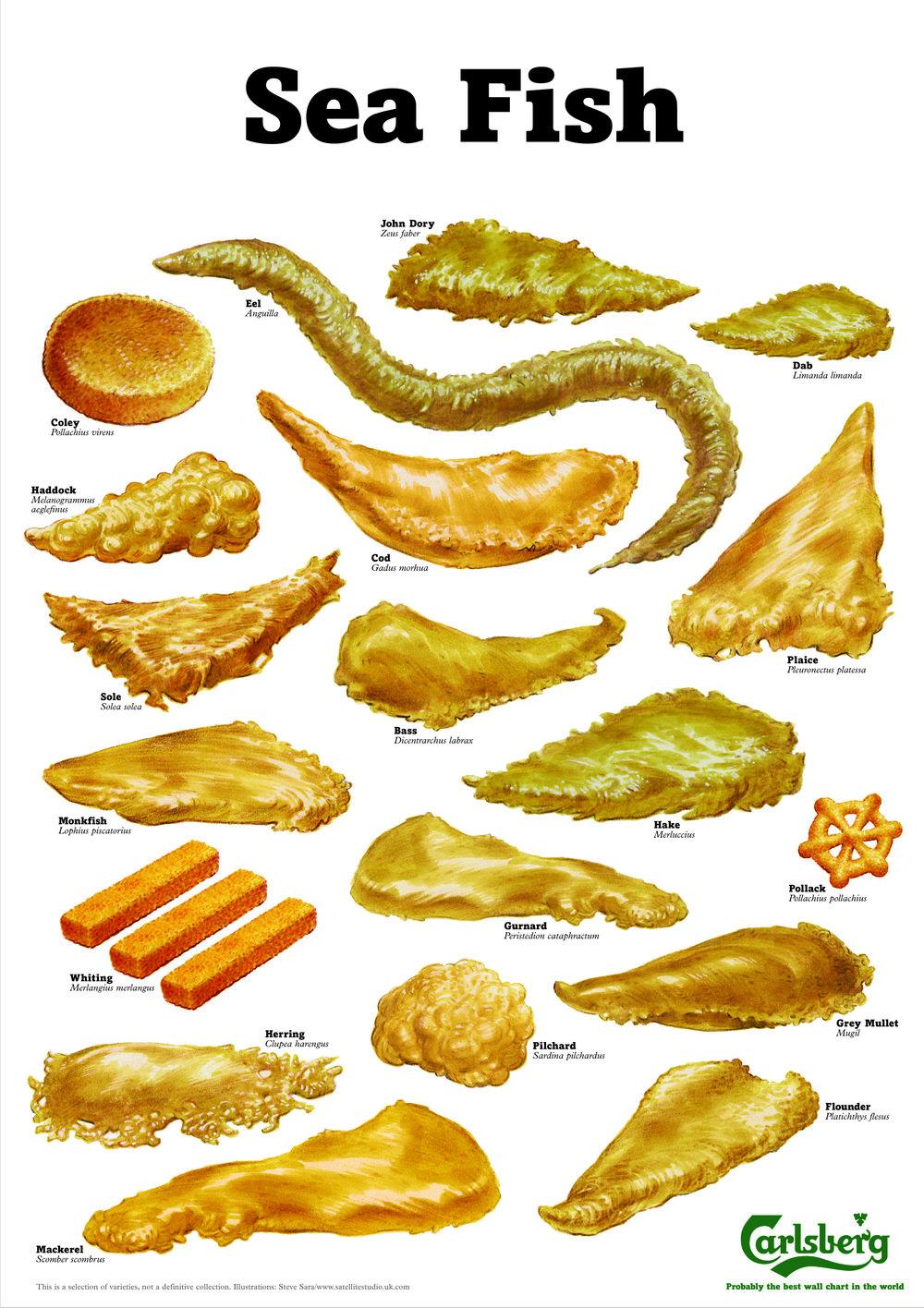CARLSBERG fish.jpg