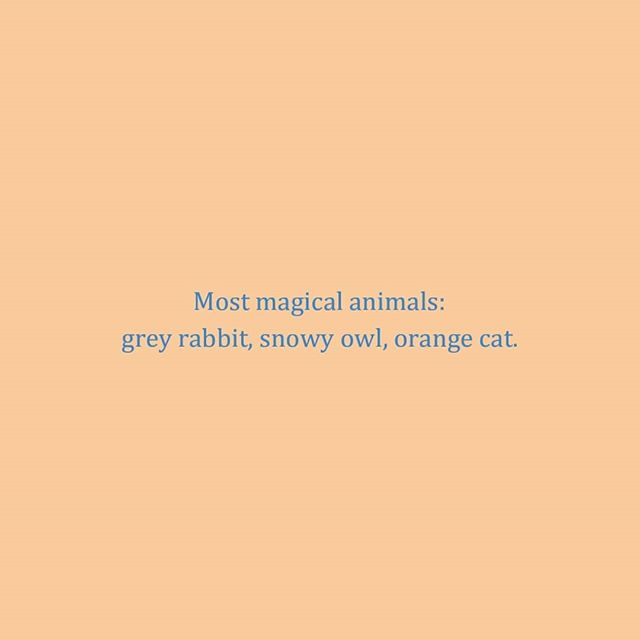 age 9 | 2000 re: animal magic . . . . #orangecat #greyrabbit #snowyowl #magic #witch #wizard #magical #harrypotter #diary #diaries #deardiary #notes #importantnote #animals #hufflepuff #journal #journalling #quotes #quotestoliveby #witchcraft #witchesofinstagram  #2000 #age9 #2000s #90skid #childhood #lists #kids #teenymoons #mischiefmanaged