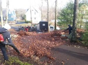 fall-cleanup1-300x224.jpg