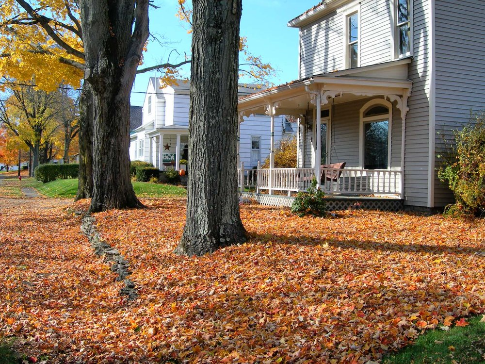 Fall-Cleanup.jpg