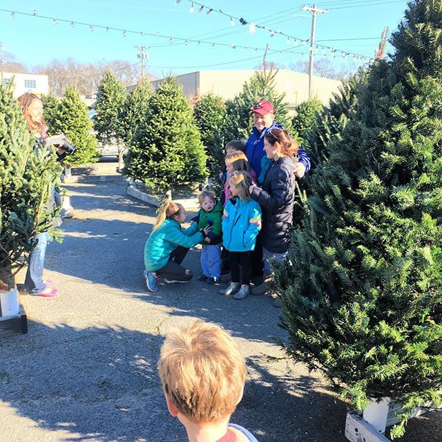 Bring the family for a fun afternoon and choose from the #Best selection of #christmastree in the South Shore!!