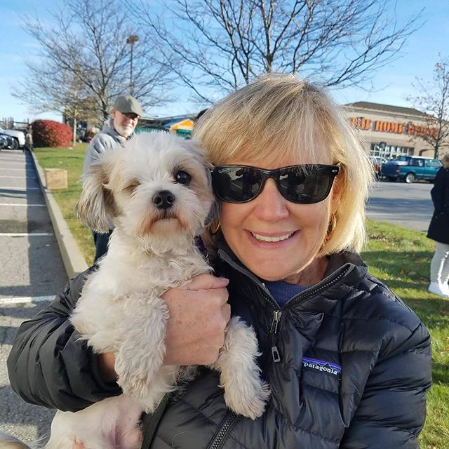 Meet Willie! He is 1-2 year old Shih Tzu/Maltese mix. He arrived in Wilton, CT today via Rescue Road Trips and is looking for his forever home! Yes, he has one eye and that doesn't slow him down at all. Active, good with other dogs, loves to play, go for walks.. If you know anyone in the CT area looking for a fun little guy, have them contact us! www.peacelovedogs.com #adoptdontshop #shihtzu #maltesemix #spayandnueter #rescueroadtrips