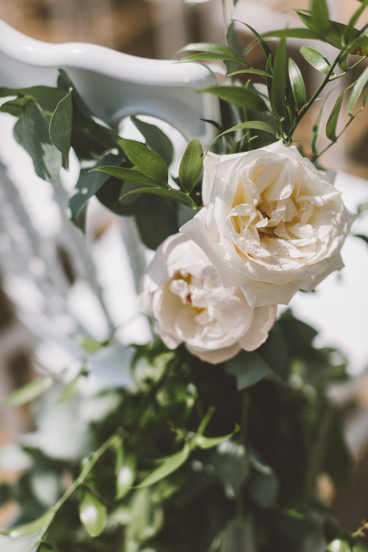 Lucy & Jonny Wedding-176.JPG