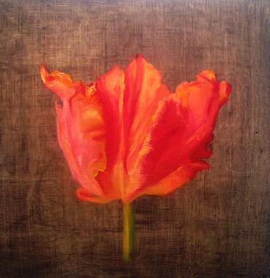 orange monarch parot tulip.jpg