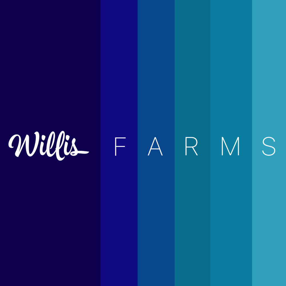 willisfarms.PNG