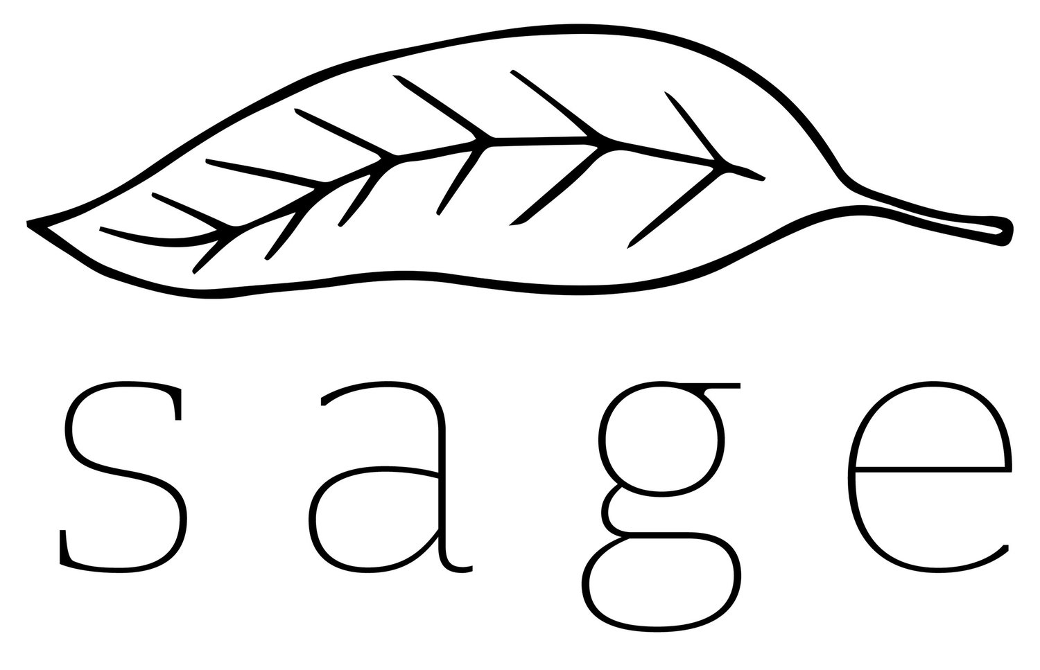 Sage Hair Studio | PVD, RI