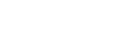 Boggus-Color-Logo---456px.png